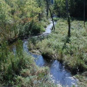 HRWC monitoring site on Hay Creek