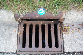 Soon, your stormdrain could look like this!