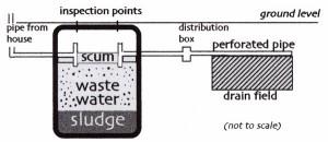 Septic System Basics