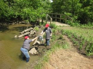 Volunteers watering a Grow Zone in Lower Huron Metropark at Woods Creek.
