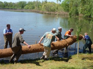Landscape professionals carrying coir log into Ford Lake shoreline