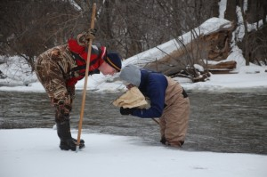 Volunteers and Staff Searching for Stoneflies