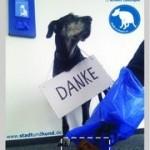 Stadt Und Hund Poster