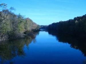 Huron River at Hudson Mills Metropar