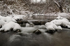 Fleming Creek in winter. Photo: John Lloyd
