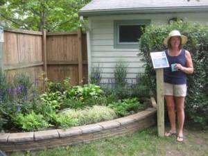 Award-winning rain garden