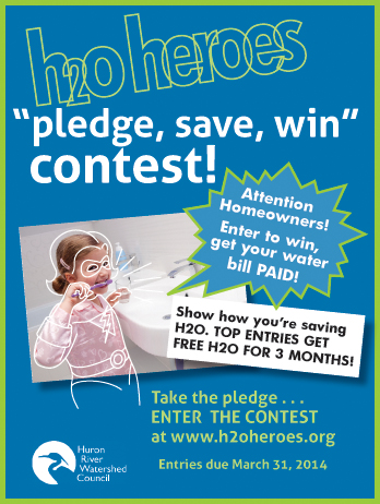 Pledge, Save, Win