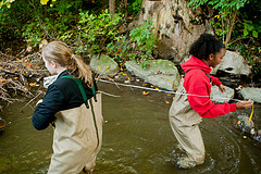 High school students learn by doing water quality monitoring.