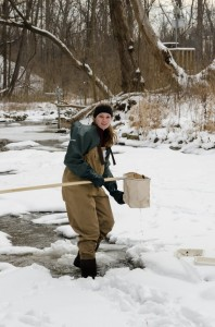 Caroline, HRWC Intern and volunteer, scours Malletts Creek in hopes of scoring a Capnid.
