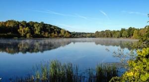 Barton Pond. Credit: Groggu