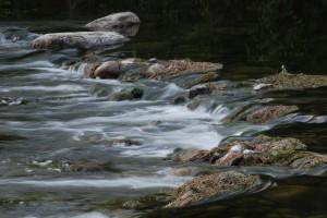 Rocks and Riffles
