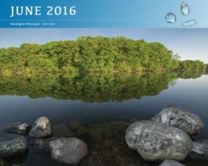 2016-Calendar-June-SM