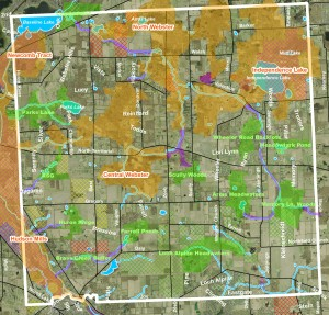 Webster Township partnered with HRWC to create a map showing the network of hubs (larger natural areas), sites (smaller ones) and linkages between them.