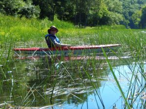 steen kayak water clover