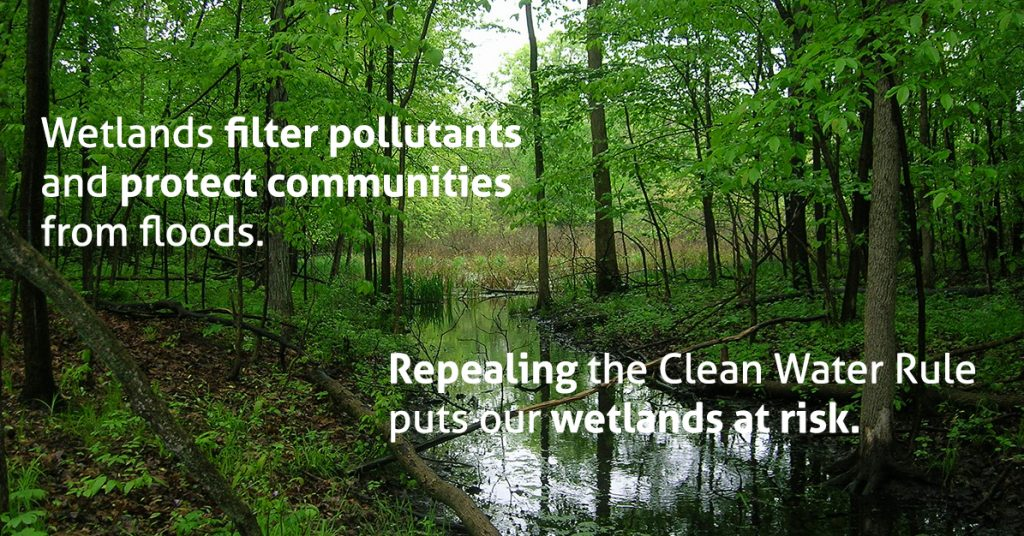 hrwc-clean-water-rule-wetlands