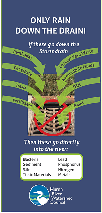 keep stormdrains clear flyer