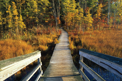 Footbridge at Pickerel Lake by Marc Akemann