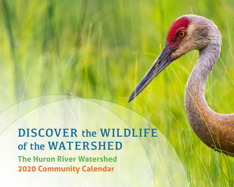 Cover, Huron River Watershed 2020 Community Calendar