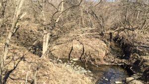 Millers Creek east meets west