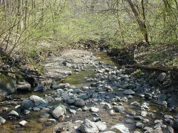 Millers Creek near Hubbard Street in Ann Arbor